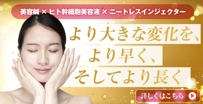 https://toyosaki-beauty.com/lp.html